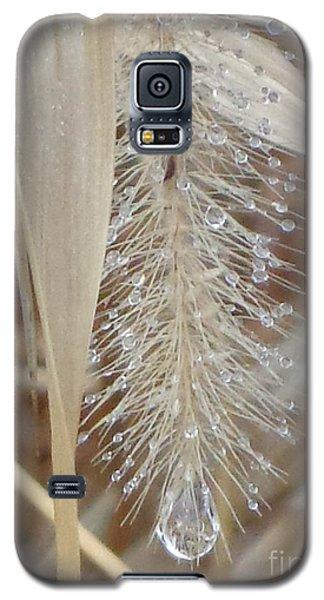 Misty Jewel Galaxy S5 Case