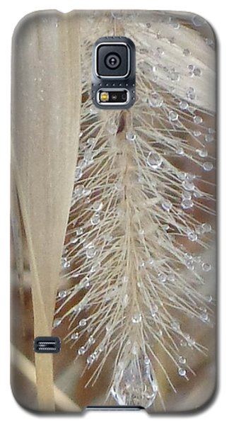 Misty Jewel Galaxy S5 Case