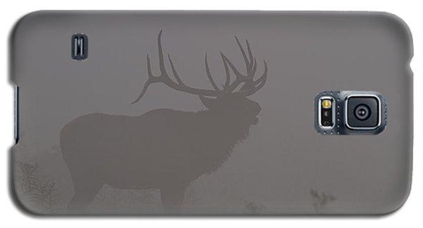 Misty Morning Bull Elk Galaxy S5 Case
