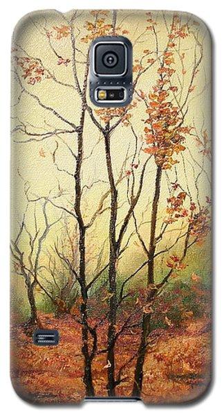 Misty Morning Galaxy S5 Case by Sorin Apostolescu