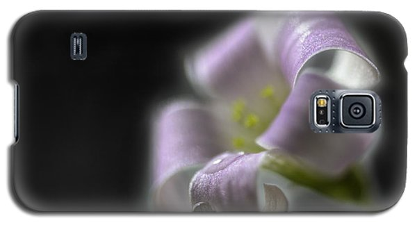 Misty Shamrock 3 Galaxy S5 Case by Susan Capuano