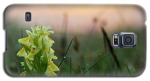 Misty Sunset Orchid Galaxy S5 Case by Kennerth and Birgitta Kullman