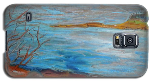 Misty Surry Galaxy S5 Case by Francine Frank