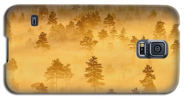 Misty Trees In The Morning Galaxy S5 Case