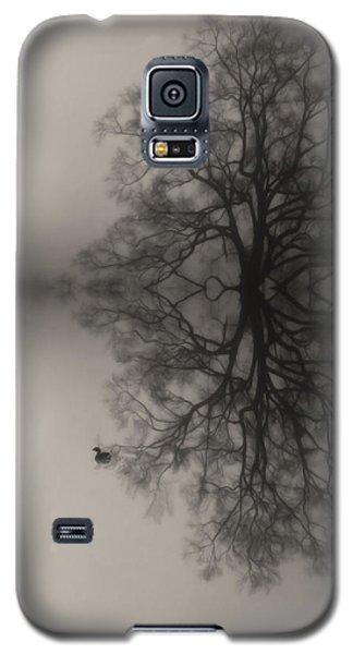 Misty Water Oak Galaxy S5 Case by Deborah Smith