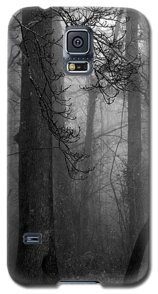 Galaxy S5 Case featuring the photograph Misty Woods by Rebecca Davis