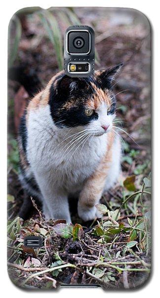 Mochi In The Garden Galaxy S5 Case by Laura Melis