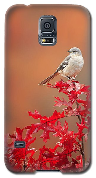 Mockingbird Autumn Galaxy S5 Case