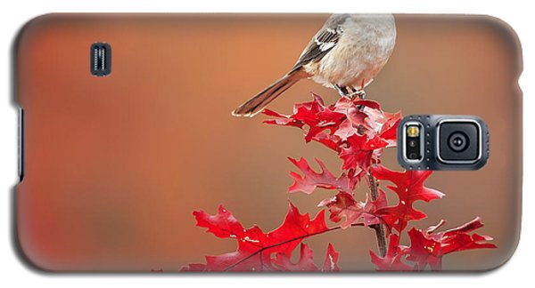 Mockingbird Autumn Square Galaxy S5 Case by Bill Wakeley