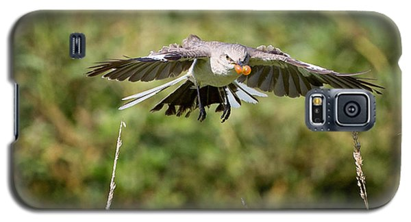 Mockingbird In Flight Galaxy S5 Case by Bill Wakeley