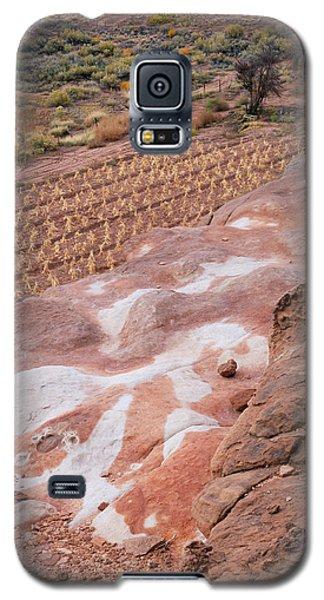Moenkopi Corn Galaxy S5 Case