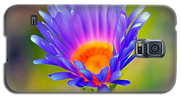Mojave Aster Galaxy S5 Case by Joe Schofield