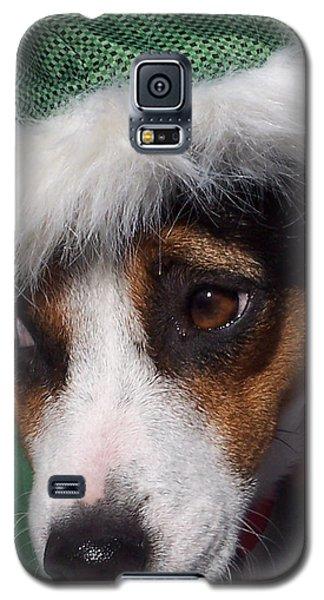 Mojo's New Holiday Coat Galaxy S5 Case