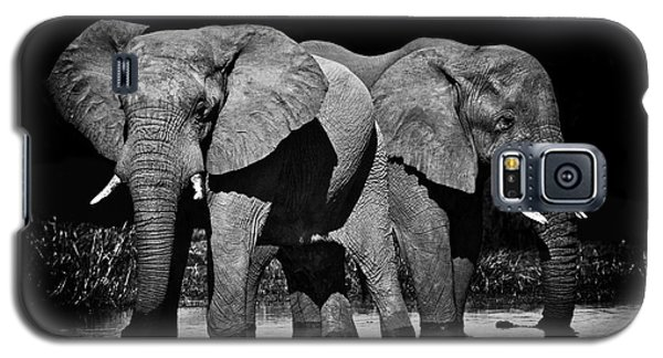 Mom And Baby Elephant Galaxy S5 Case