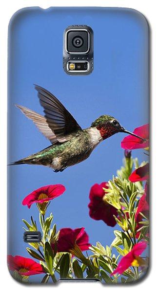 Moments Of Joy Galaxy S5 Case
