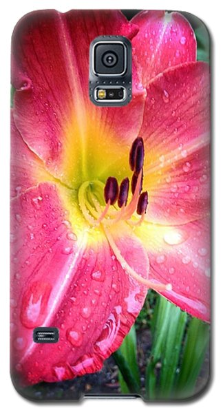 Mom's Secret Garden Galaxy S5 Case