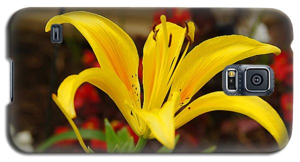 Galaxy S5 Case featuring the pyrography Mom's Yellow Flower by B Wayne Mullins
