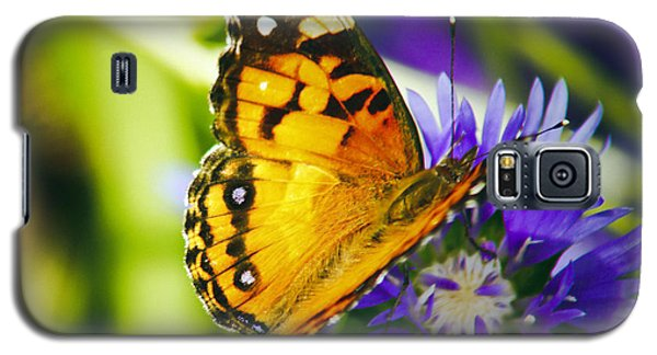 Monarch And Flower Galaxy S5 Case
