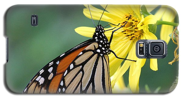 Galaxy S5 Case featuring the photograph Monarch Beauty by Doris Potter