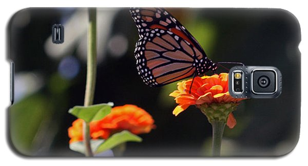 Monarch Butterfly And Orange Zinnias Galaxy S5 Case by Kay Novy