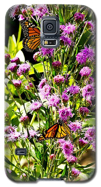 Monarch Butterfly Couple Galaxy S5 Case
