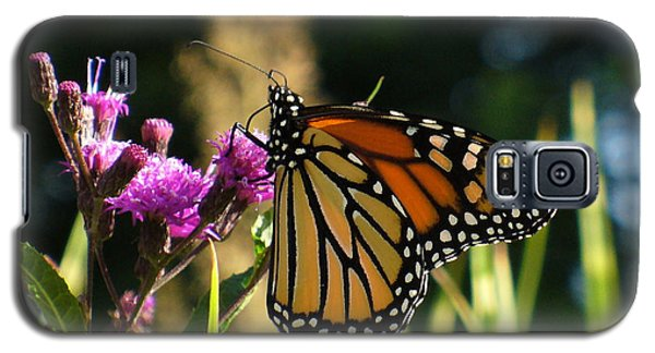Galaxy S5 Case featuring the photograph Monarch Butterfly by Lingfai Leung