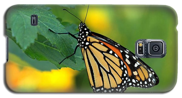 Monarch Butterfly Galaxy S5 Case