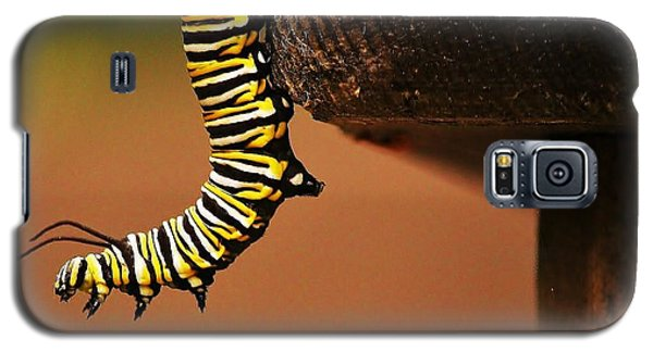 Monarch Caterpiller Galaxy S5 Case