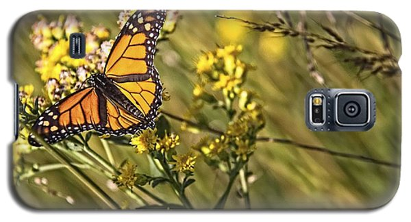 Monarch Hatch Galaxy S5 Case
