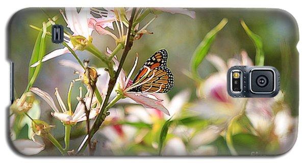 Monarch Galaxy S5 Case by Kevin Ashley