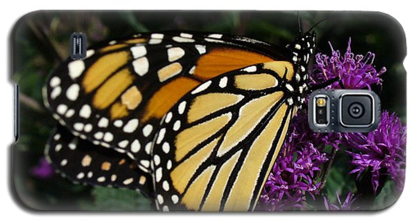 Galaxy S5 Case featuring the photograph Monarch by Lingfai Leung