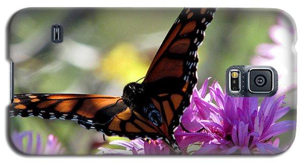 Monarch Meditation Galaxy S5 Case