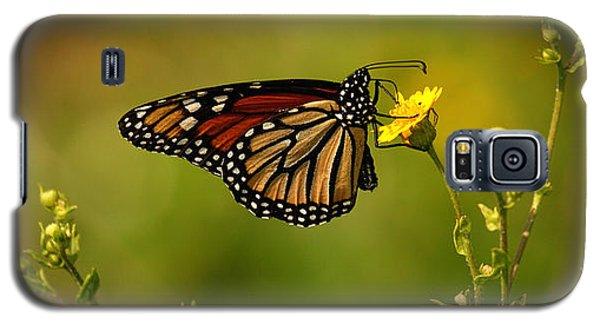 Monarch Moment Galaxy S5 Case