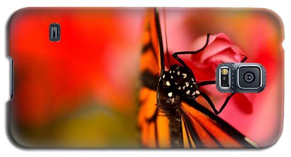 Monarch Morning Galaxy S5 Case