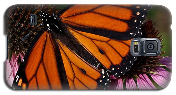 Galaxy S5 Case featuring the photograph Monarch On Purple Coneflower by Barbara McMahon