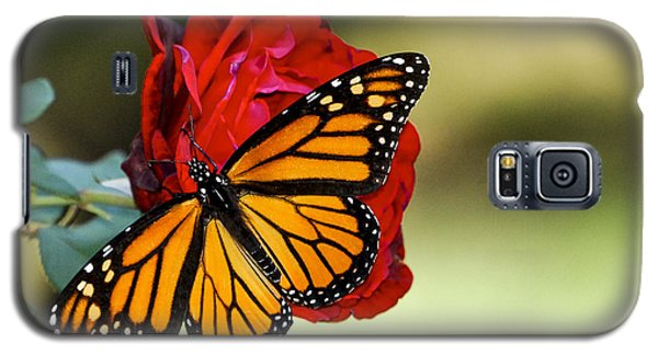 Galaxy S5 Case featuring the photograph Monarch On Rose by Debbie Karnes