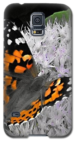 Galaxy S5 Case featuring the photograph Monarch by Photographic Arts And Design Studio