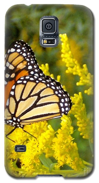Galaxy S5 Case featuring the photograph Monarch by Sara  Raber