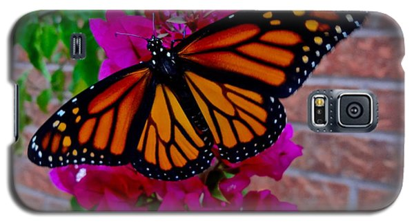 Galaxy S5 Case featuring the photograph Monarch by Sarah Mullin