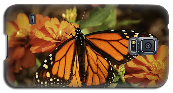 Monarch Spotlight. Galaxy S5 Case