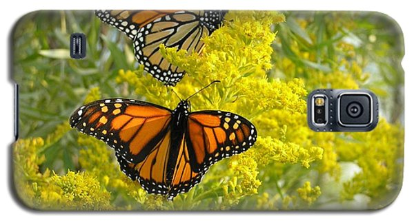 Galaxy S5 Case featuring the photograph Monarchs On Goldenrod by Susan  Dimitrakopoulos