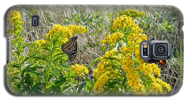 Monarchs On The Beach Galaxy S5 Case by Nance Larson