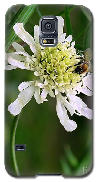Galaxy S5 Case featuring the photograph Monet's Garden Bee. Giverny by Jennie Breeze