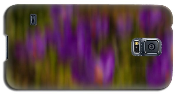 Monet's Garden Galaxy S5 Case by Sandi Mikuse