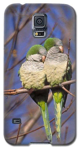 Monk Parakeets Galaxy S5 Case by Paul J. Fusco