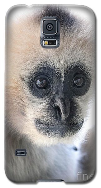 Monkey Face Galaxy S5 Case