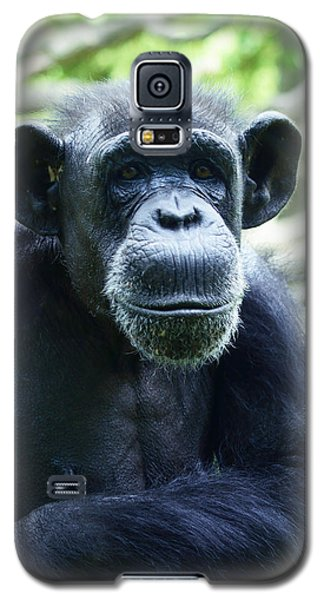 Galaxy S5 Case featuring the photograph Monkey See Monkey Do by B Wayne Mullins
