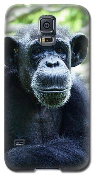 Monkey See Monkey Do Galaxy S5 Case by B Wayne Mullins