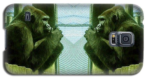 Monkey See Monkey Do Galaxy S5 Case by Nina Silver