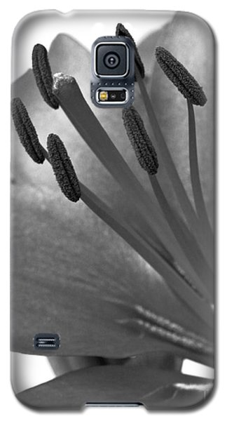 Galaxy S5 Case featuring the photograph Monochrome Asian Lily by Anita Oakley